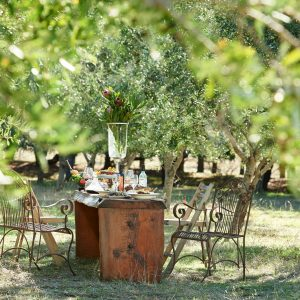 A photo of rustic metal chairs and wooden table set with plates of food and crystal glassware surrounded by olive trees shows the unique natural and gourmet experiences to be had on The South West Edge road trip
